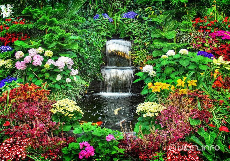 Izbor za najljepše dvorište