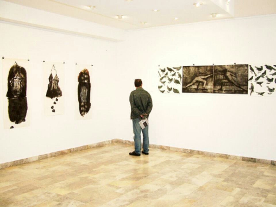 Otvorena izložba grafika Maje Zemunik u Petrovcu