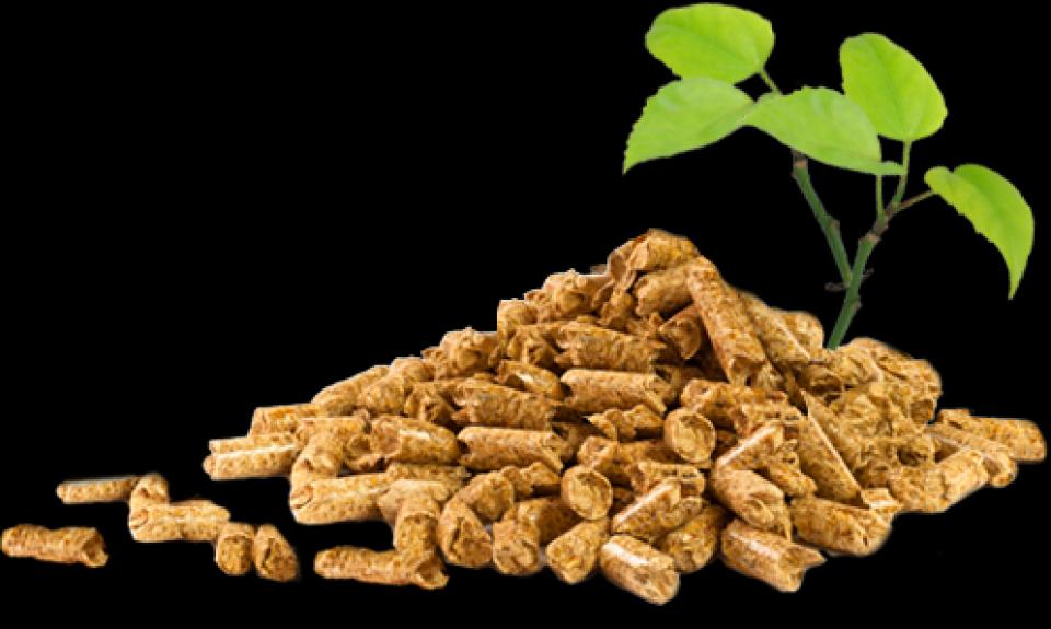 Odobreno više od 130 kredita u projektu Energy Wood