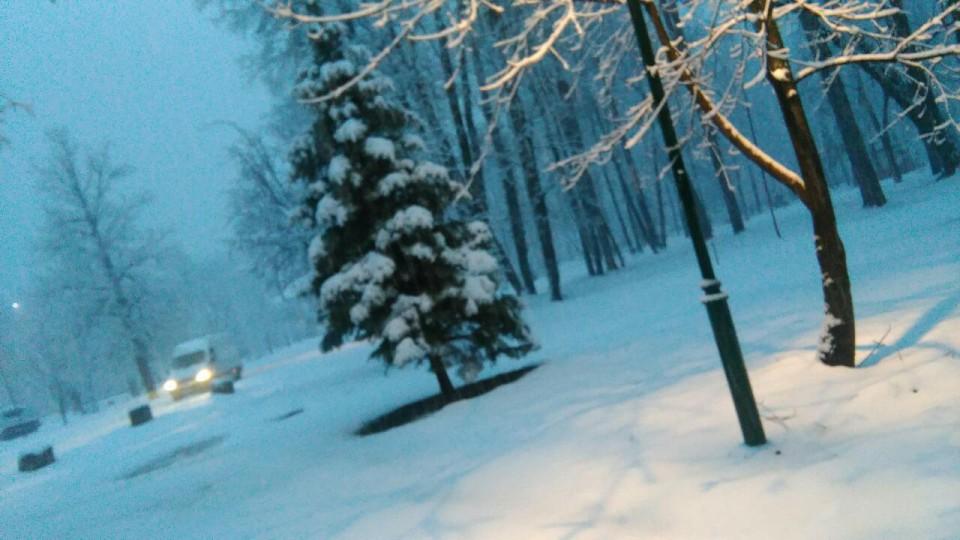 Snijeg na Cetinju